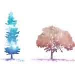 Kurs_online_drzewa_sylwety_2_promo